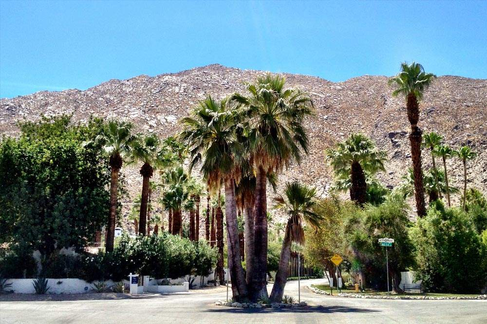 Entrance to the Mesa Neighborhood in Palm Springs