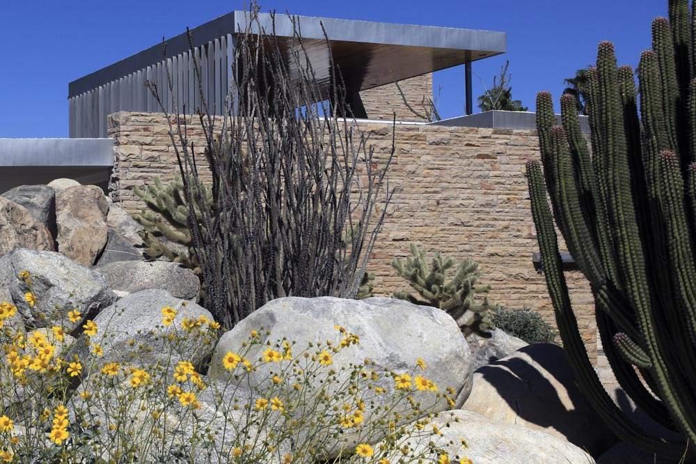 Palm Springs Neighborhood The Mesa