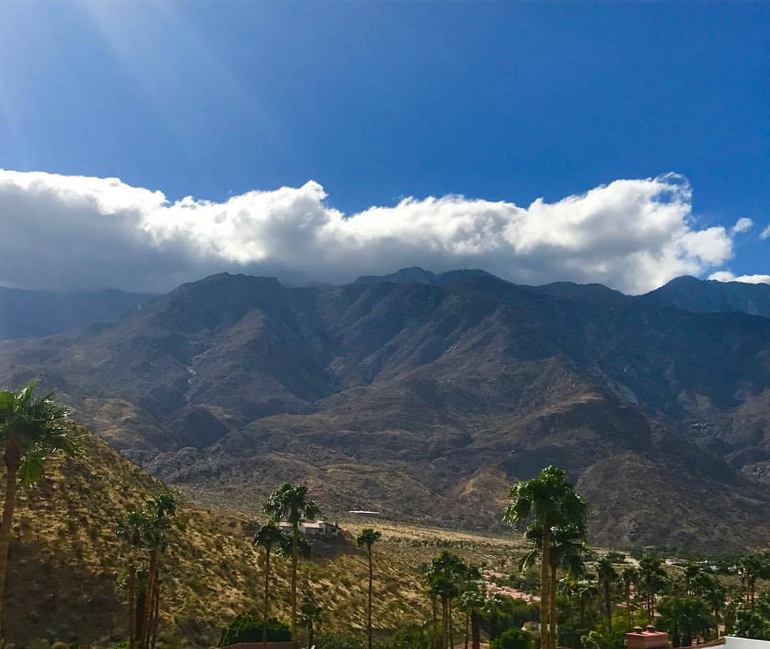 Bay Area Real Estate And Rentals: Araby Cove, Palm Springs CA, Real Estate, Homes For Sale