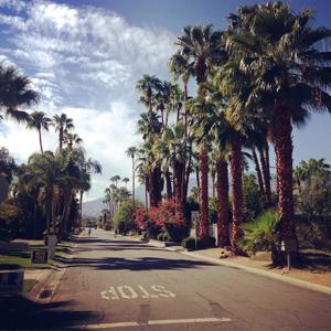Deepwell Estates Palm Springs CA Neighborhood